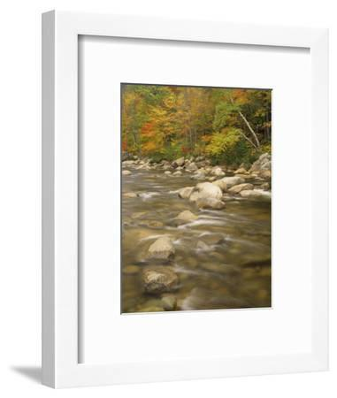 Autumn Colors Along the Swift River, White Mountains National Forest, New Hampshire, USA-Adam Jones-Framed Photographic Print