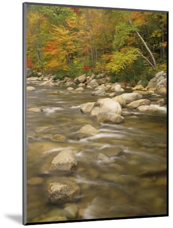 Autumn Colors Along the Swift River, White Mountains National Forest, New Hampshire, USA-Adam Jones-Mounted Photographic Print