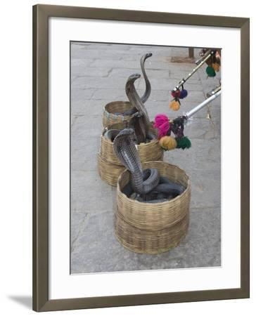 Snake Charmers Baskets Containing Cobras, Jaipur, India-Hal Beral-Framed Photographic Print