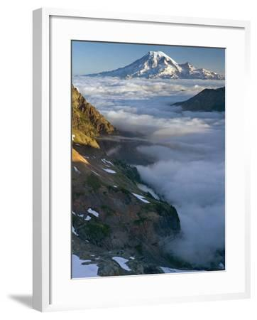 View of Mt. Rainier Above the Clouds from the Goat Rocks Wilderness, Washington, USA-David Cobb-Framed Photographic Print