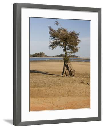Dry Lake Bed of Lake Marion in the Santee Cooper Lake System During the Fall Drought of 2009-Marc Epstein-Framed Photographic Print