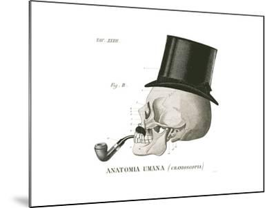 Dandy Bones II-Sue Schlabach-Mounted Art Print