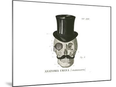 Dandy Bones I-Sue Schlabach-Mounted Art Print