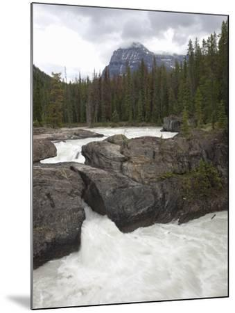 The Kicking Horse River Erodes a Natural Bridge in Limestone, Yoho National Park, Canada-Marli Miller-Mounted Photographic Print