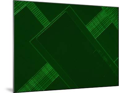 Micrograph of a Computer Microprocessor, LM X200, Epifluorecence, UV Illumination-Robert Markus-Mounted Photographic Print