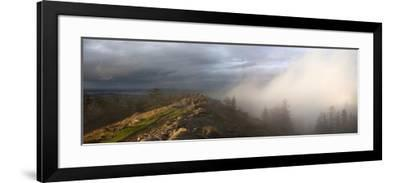 Simultaneous Sunlight and Fog on Spencer Butte in the Coast Ranges-Marli Miller-Framed Photographic Print
