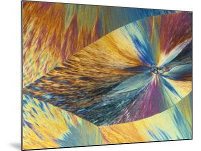 Vitamin C or Ascorbic Acid Crystals, Polarized LM-George Musil-Mounted Photographic Print
