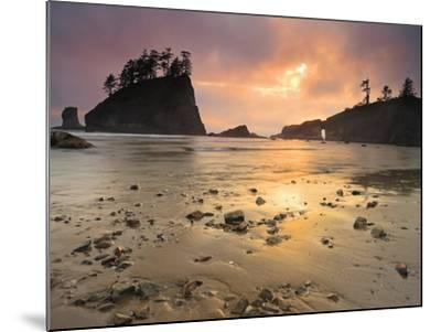 Sunset Light Through Breaks in the Clouds on Second Beach, Olympic National Park, Washington, USA-Geoffrey Schmid-Mounted Photographic Print
