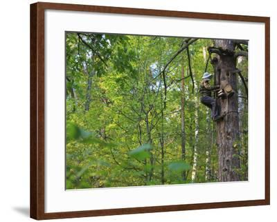 A Beekeeper Removing the Protective Trellis of Leaves and Wire Netting High Up on a Tree Trunk-Eric Tourneret-Framed Photographic Print