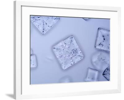 Salt Crystals, LM X25-Scientifica-Framed Photographic Print
