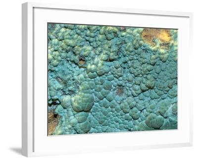 Malachite, an Ore of Copper-Scientifica-Framed Photographic Print