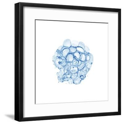 Cellular Clouds in Blue B-THE Studio-Framed Premium Giclee Print