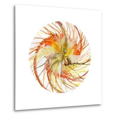 Spin Art 6-Kyle Goderwis-Metal Print