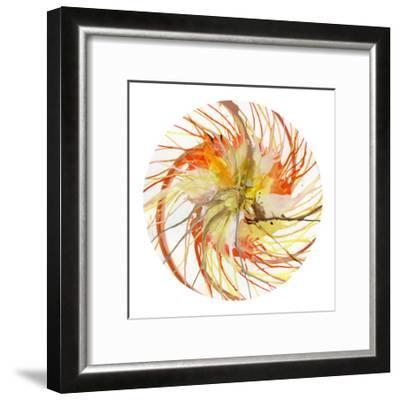 Spin Art 6-Kyle Goderwis-Framed Premium Giclee Print
