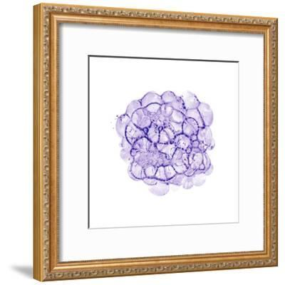Cellular Clouds in Purple C-THE Studio-Framed Premium Giclee Print