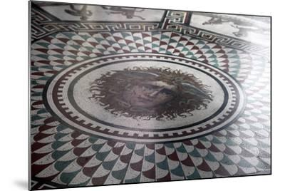 Floor Mosaic in the Pavilion Hall, State Hermitage Museum, St Petersburg, Russia, 1847-1851-Andrei Ivanovich Stakenschneider-Mounted Photographic Print