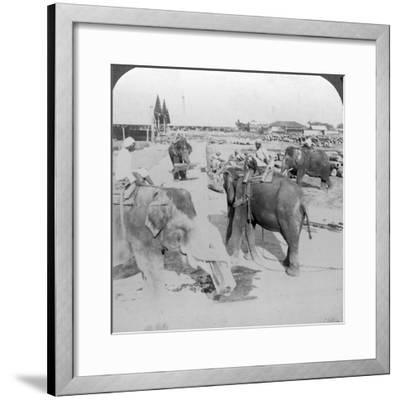 Elephants Working in a Timber Yard, India, C1900s-Underwood & Underwood-Framed Photographic Print
