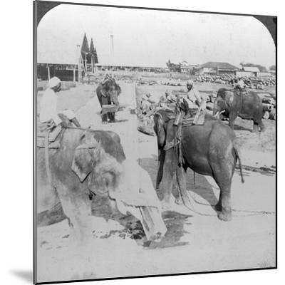 Elephants Working in a Timber Yard, India, C1900s-Underwood & Underwood-Mounted Photographic Print