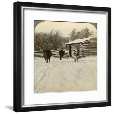 Winter on a Ranch, Montana, Usa-Underwood & Underwood-Framed Photographic Print