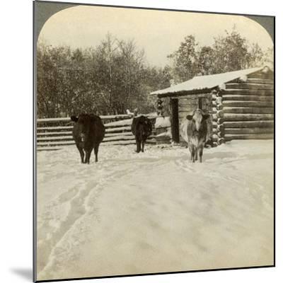 Winter on a Ranch, Montana, Usa-Underwood & Underwood-Mounted Photographic Print