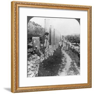 Herod's Street of Columns, Samaria, Palestine (Israe), 1905-Underwood & Underwood-Framed Photographic Print