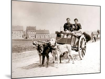 Dogs Pulling Women on a Cart, Antwerp, 1898-James Batkin-Mounted Photographic Print