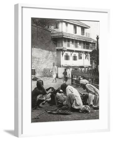 Shoeing a Bullock, India, C1927-C1929--Framed Photographic Print