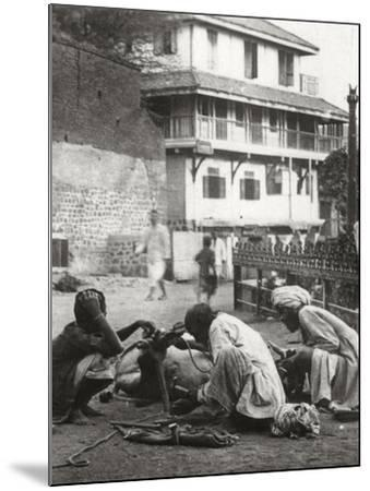 Shoeing a Bullock, India, C1927-C1929--Mounted Photographic Print