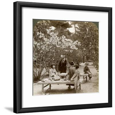 A Family Enjoying a Picnic under the Cherry Blossoms, Omuro Gosho, Kyoto, Japan, 1904-Underwood & Underwood-Framed Photographic Print