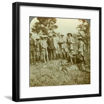 Tiger Hunting, Cooch Behar, West Bengal, India, C1900s-Underwood & Underwood-Framed Photographic Print