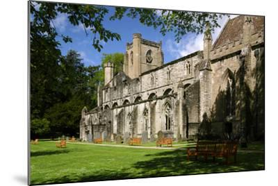 Dunkeld Cathedral, Perthshire, Scotland-Peter Thompson-Mounted Photographic Print