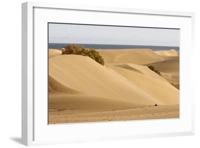 Maspalomas Sand Dunes, Gran Canaria, Canary Islands, Spain-Peter Thompson-Framed Photographic Print