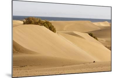Maspalomas Sand Dunes, Gran Canaria, Canary Islands, Spain-Peter Thompson-Mounted Photographic Print