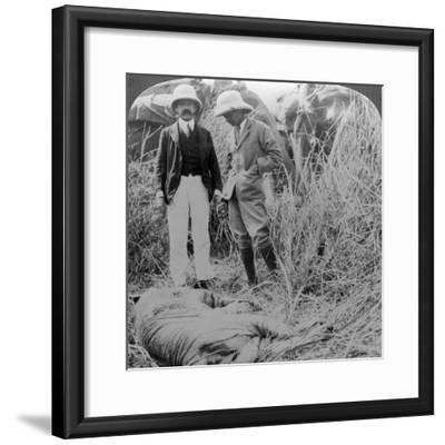 The Dead Maneater, Behar Jungle, India, C1900s-Underwood & Underwood-Framed Photographic Print