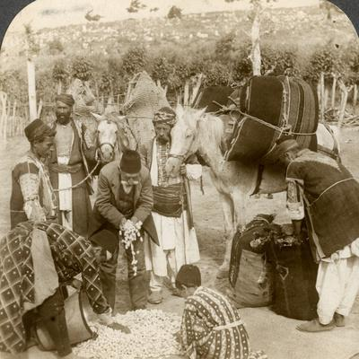 Experts Purchasing Silk Cocoons, for Export to France, Antioch, Syria, 1900s-Underwood & Underwood-Framed Photographic Print