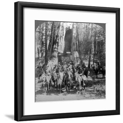 Cavalry Passing Through the Great Tree 'California, California, Usa-Underwood & Underwood-Framed Photographic Print