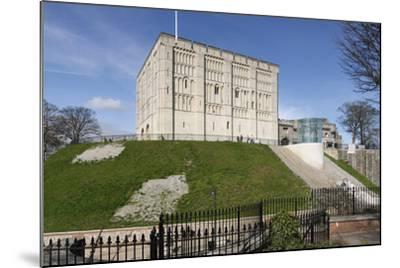 Norwich Castle, Norfolk, 2010-Peter Thompson-Mounted Photographic Print