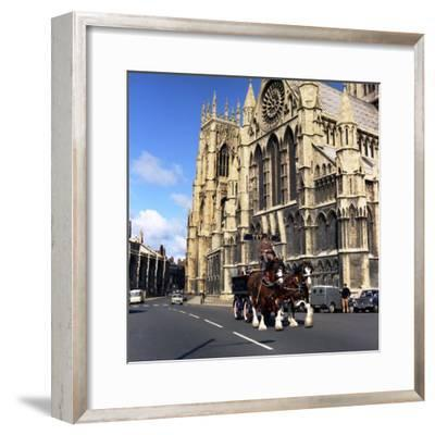 Tetley Shire Horses Outside York Minster, North Yorkshire, 1969-Michael Walters-Framed Photographic Print