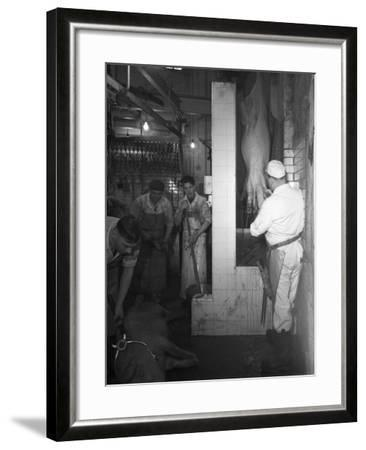 Butchery Factory, Rawmarsh, South Yorkshire, 1955-Michael Walters-Framed Photographic Print