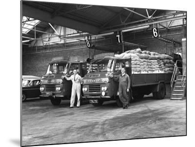 Commer Lorries at Spillers Foods Ltd, Gainsborough, Lincolnshire, 1962-Michael Walters-Mounted Photographic Print