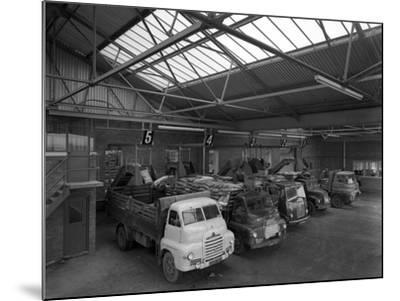 Line Up of 1950S Lorries at Spillers Animal Foods, Gainsborough, Lincolnshire, 1961-Michael Walters-Mounted Photographic Print