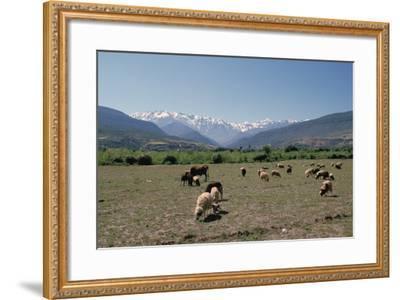 High Atlas, Morocco-Vivienne Sharp-Framed Photographic Print