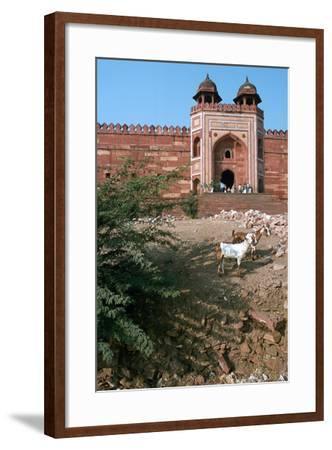 Buland Darwaza, Fatehpur Sikri, Agra, Uttar Pradesh, India-Vivienne Sharp-Framed Photographic Print