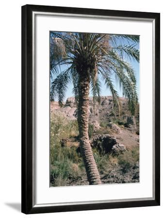 Palm Tree Below Lion of Babylon, Iraq, 1977-Vivienne Sharp-Framed Photographic Print