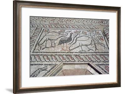 Mosaic, Ruins of the Roman Town of Stobi, Gradsko, Macedonia-Vivienne Sharp-Framed Photographic Print