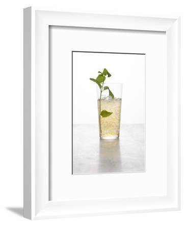 Gourmet - February 2009-Stephanie Foley-Framed Premium Photographic Print