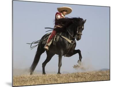 Charro on a Black Andalusian Stallion Galloping in Ojai, California, USA-Carol Walker-Mounted Photographic Print