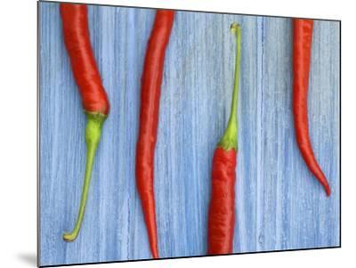 Red Chilli Peppers Chillies Freshly Harvested on Pale Blue Background-Gary Smith-Mounted Photographic Print