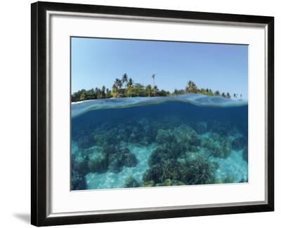 Split-Level Shot of Coral Reef and Shore, Phillippines-Jurgen Freund-Framed Photographic Print
