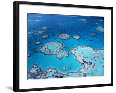 Aerial View of Hardy Reef, Great Barrier Reef and Sea, Queensland, Australia-Jurgen Freund-Framed Photographic Print